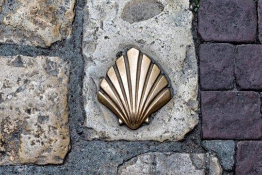 Coquillage des chemins de St-Jacques-de-Compostelle